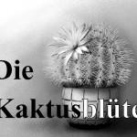 2009_Artikelbild_Kaktusblüte